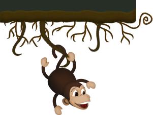 The Kir Monkey